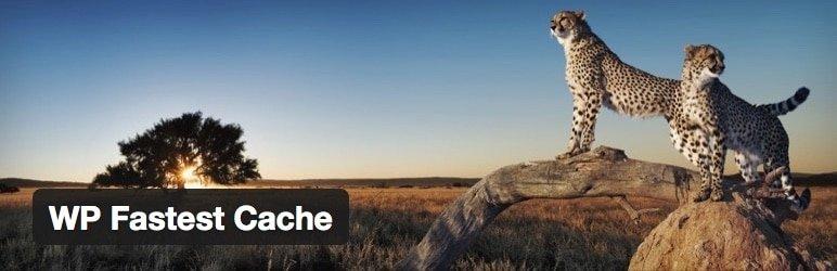 fastest-cache-wordpress-cache-eklentisi