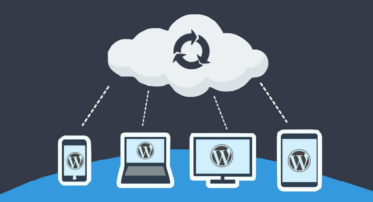Wordpress-yedek-alma