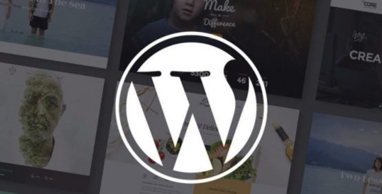 WordPress-core-nedirjpg