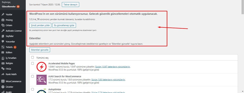 wordpress-guncelleme-surum